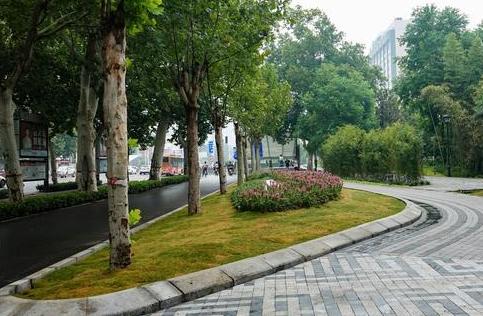 公园更近,道路更美,紫荆山公园拆墙透绿见成效