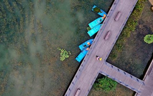 太美了,双鹤湖公园的线条之美