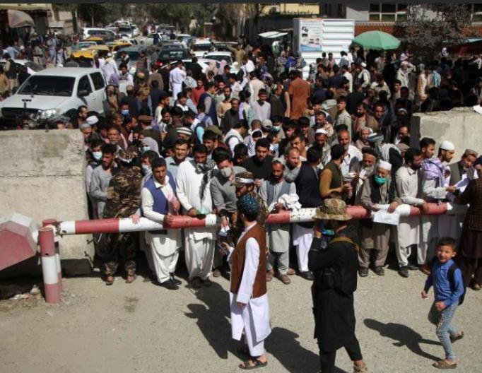 阿富汗临时政府恢复发放护照